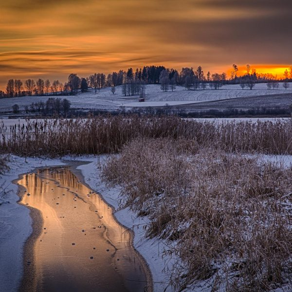 011 - Vinter ved Østensjøvannet