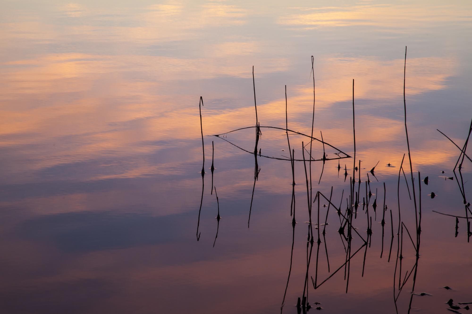 015 - Høsthimmel i Årungen