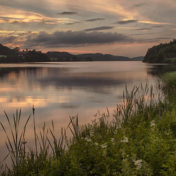 041 - Sommerkveld ved Årungen